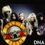 Guns N' Roses: DNA