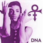 Prince: DNA